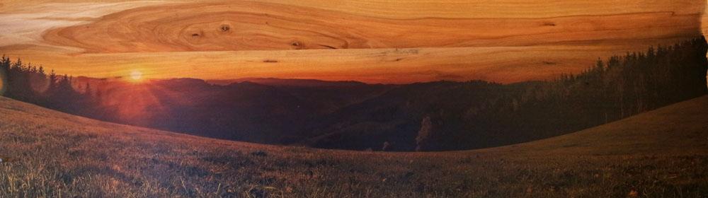 Schwarzwaldbild auf Holz gedruckt